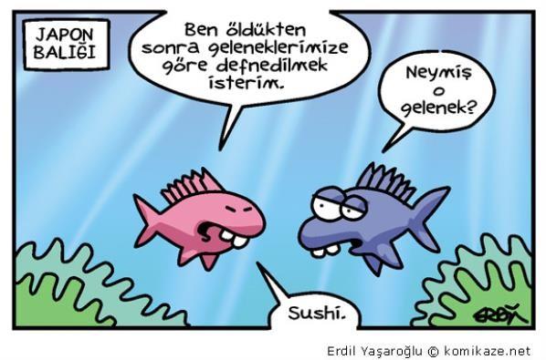 Japon-Balığı-karikatürü.jpg