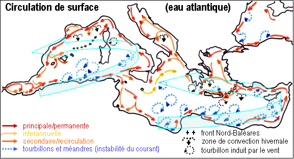 schema_circulation-surface_Mediterranee.png